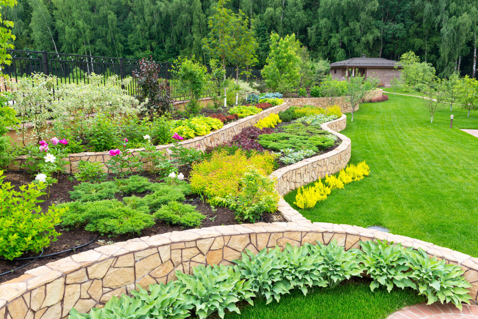 diy landscaping tips